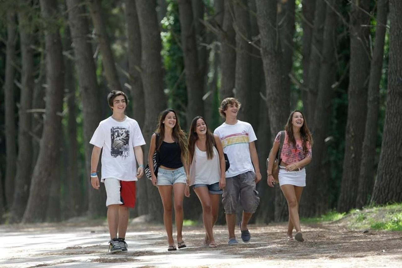 Bosque y Vivero