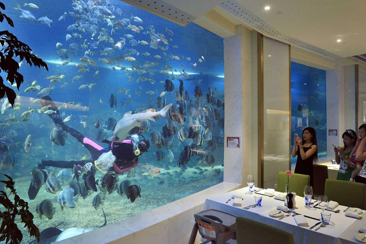 Ocean Blue Aquarium Restaurant