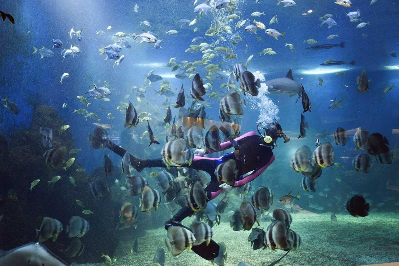 Ocean Blue Aquarium Restaurant