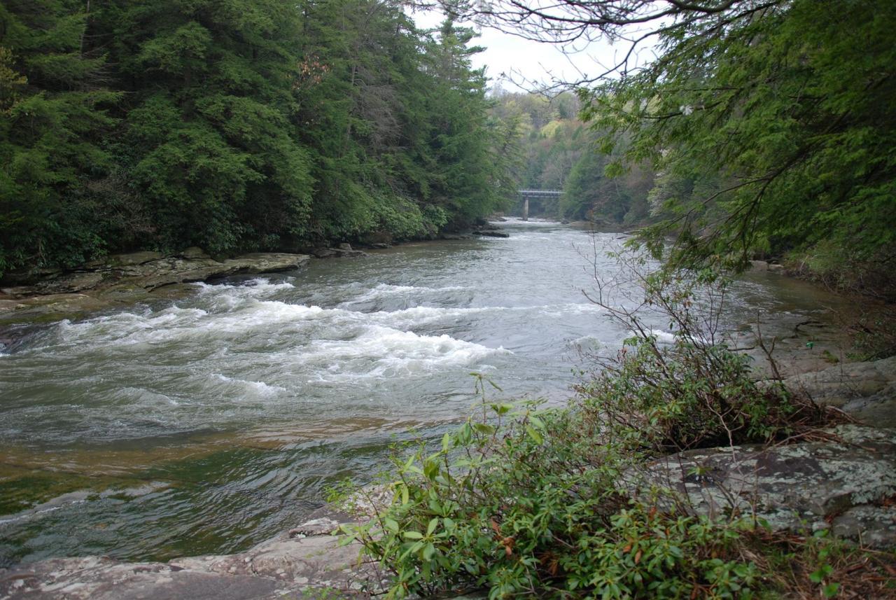 Deep Creek Area