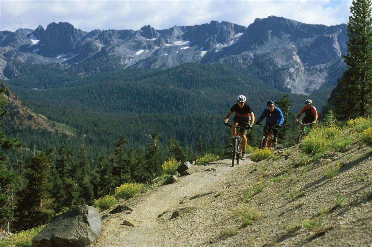 Mountain Biking the Methow