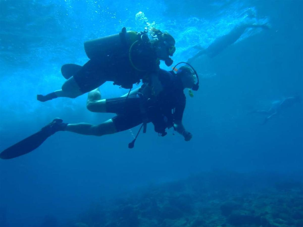 Accessible diving, Dolphin Suites, Willemstad, Curaçao