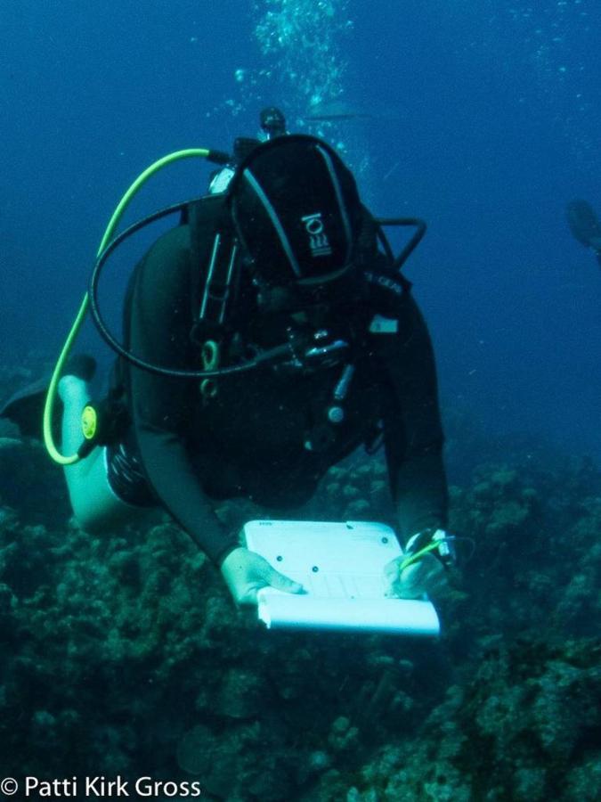 Berçário coral