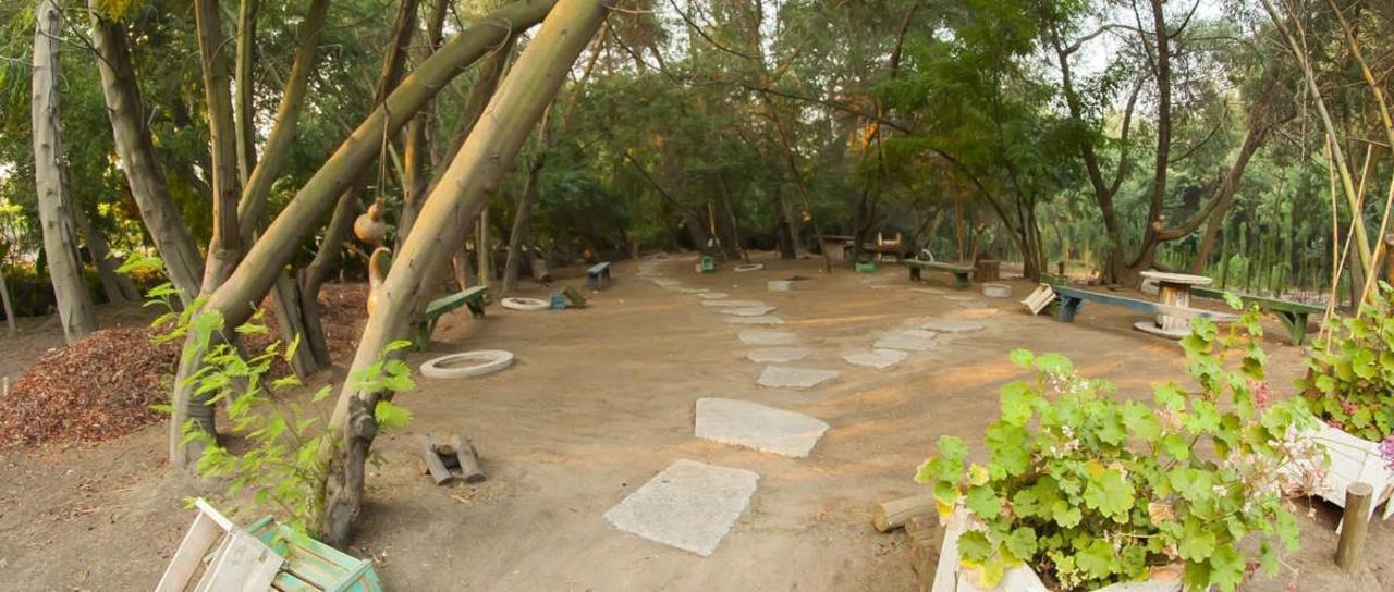 Park and Parronales
