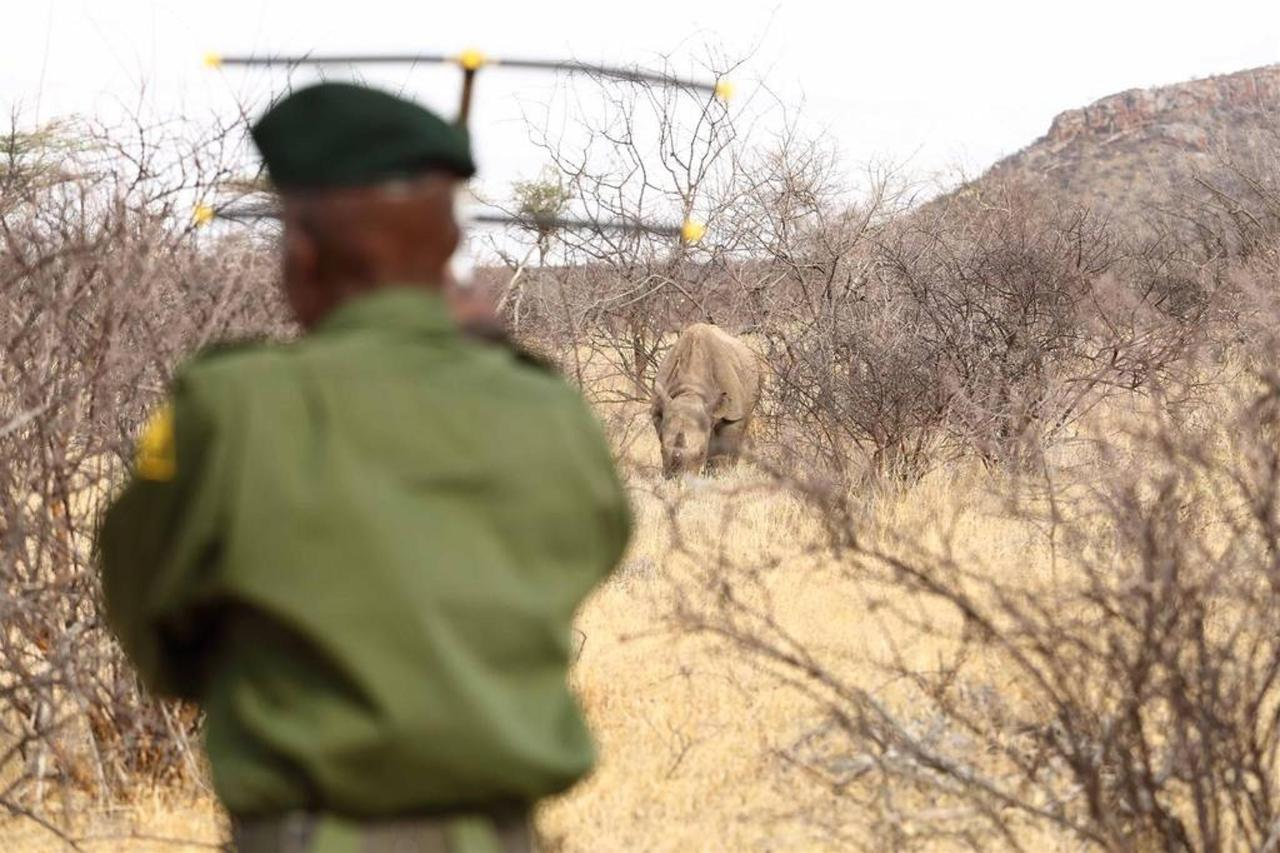 Sera Ranger withtransmitter and rhino.jpg