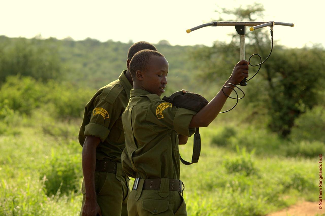 NRT IMAGE: Sera rangers at work.jpg