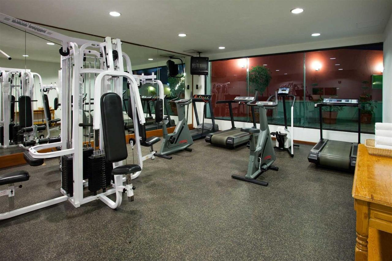 GYM, Holiday Inn Puebla la Noria.jpg