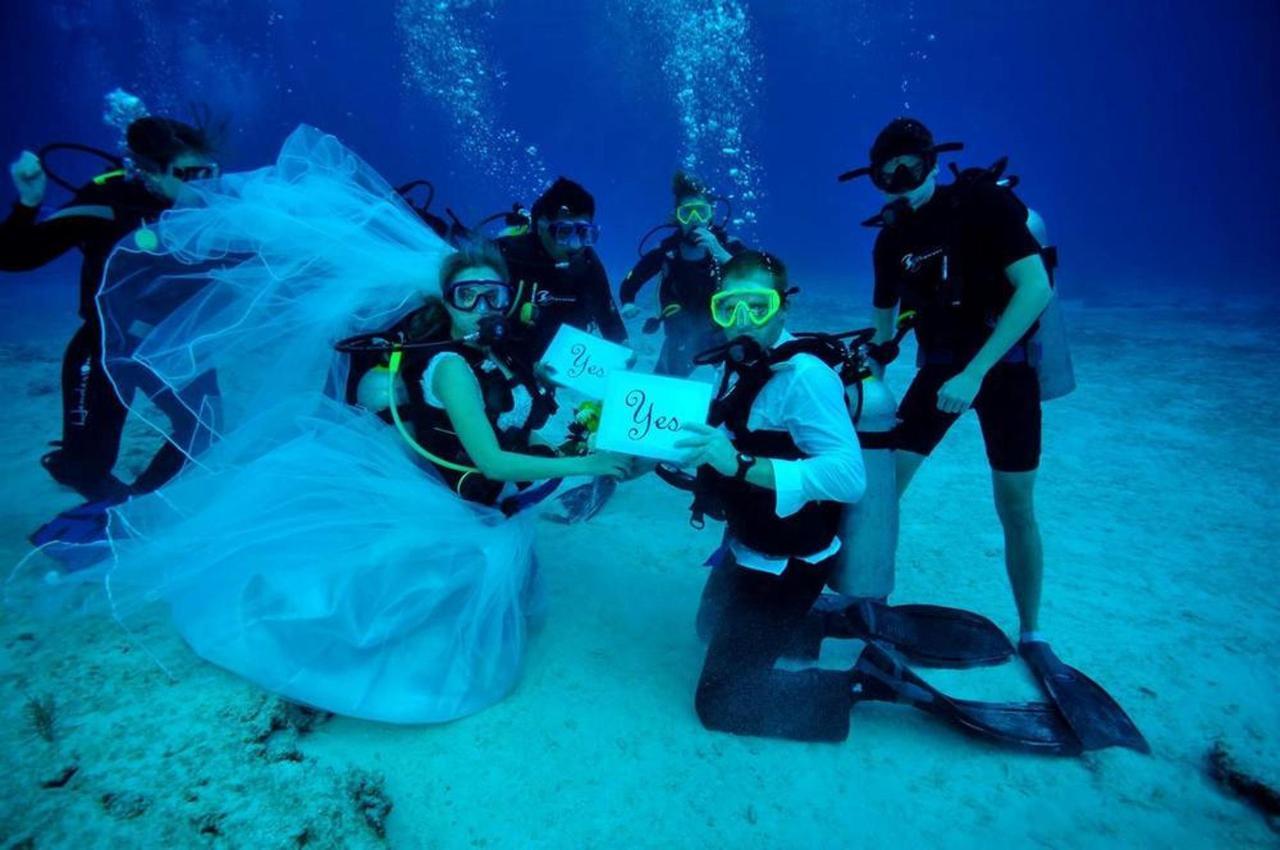 underwater wedding.jpg