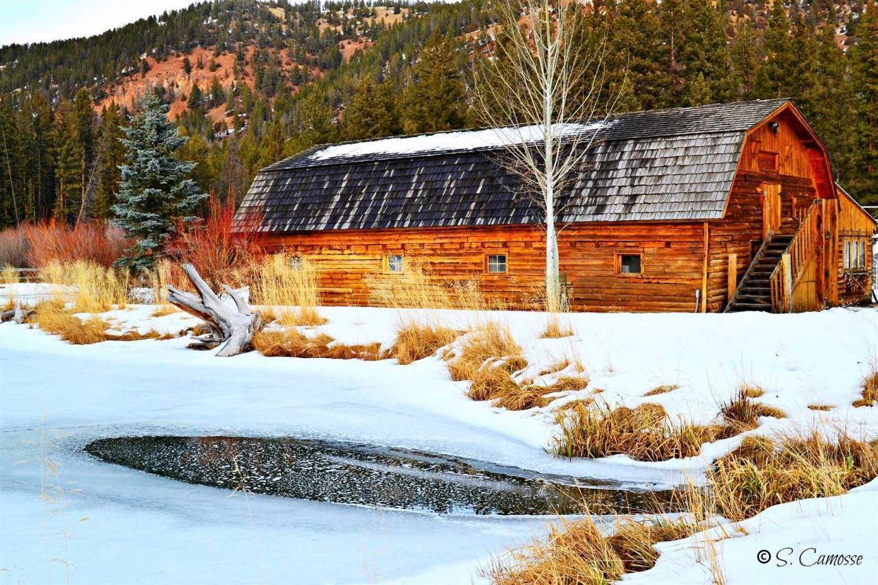 the-barn.jpg.1920x0.jpg
