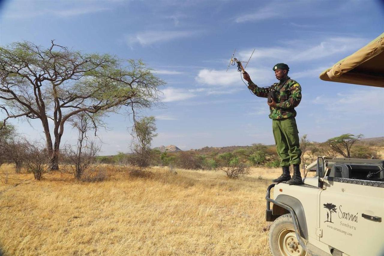 Sera ranger with transmitter and Saruni car.jpg