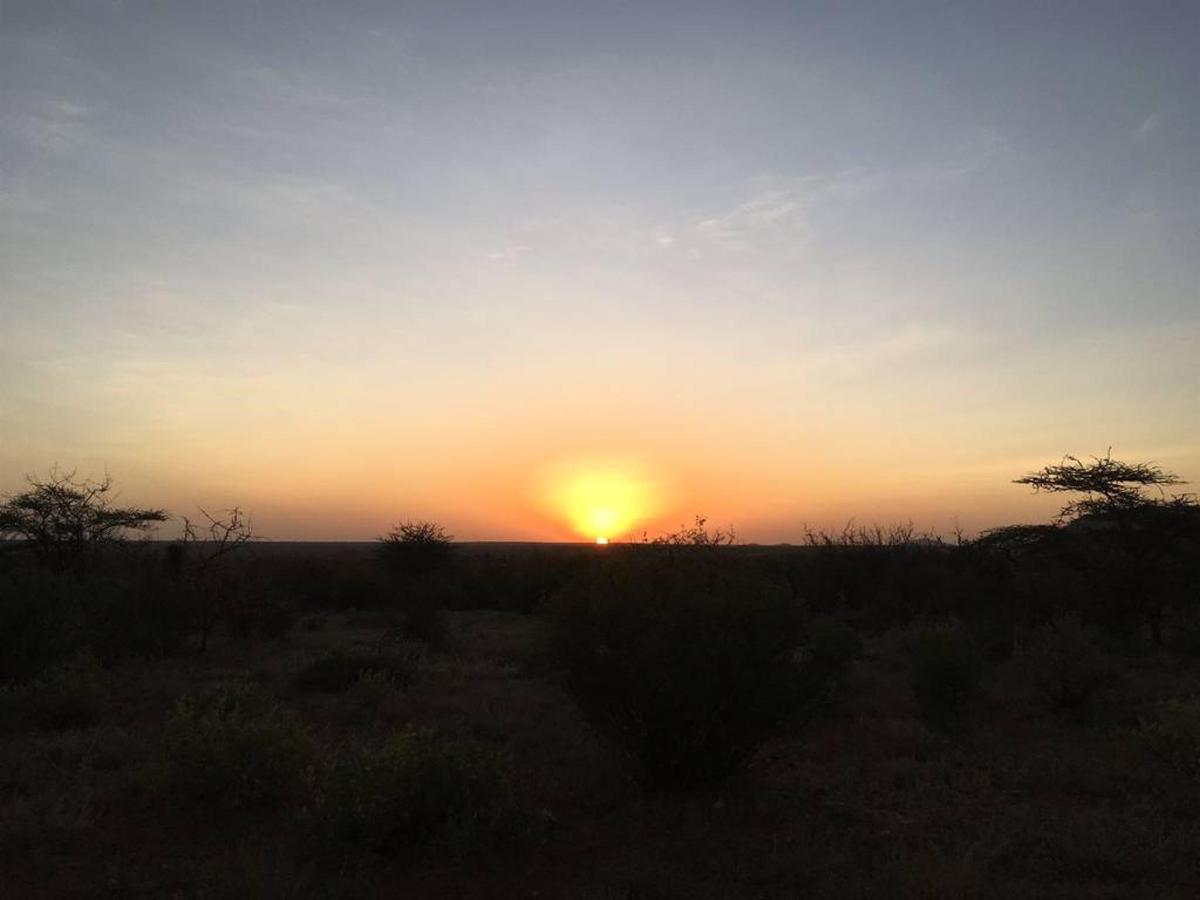 Rhino training sunrise.jpg