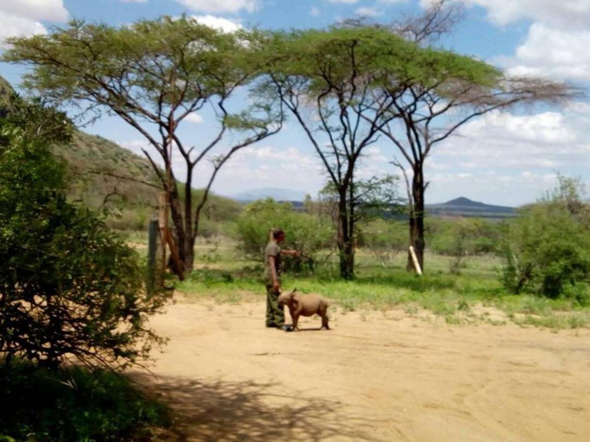 Loijupu abandoned rhino and his carer.jpg