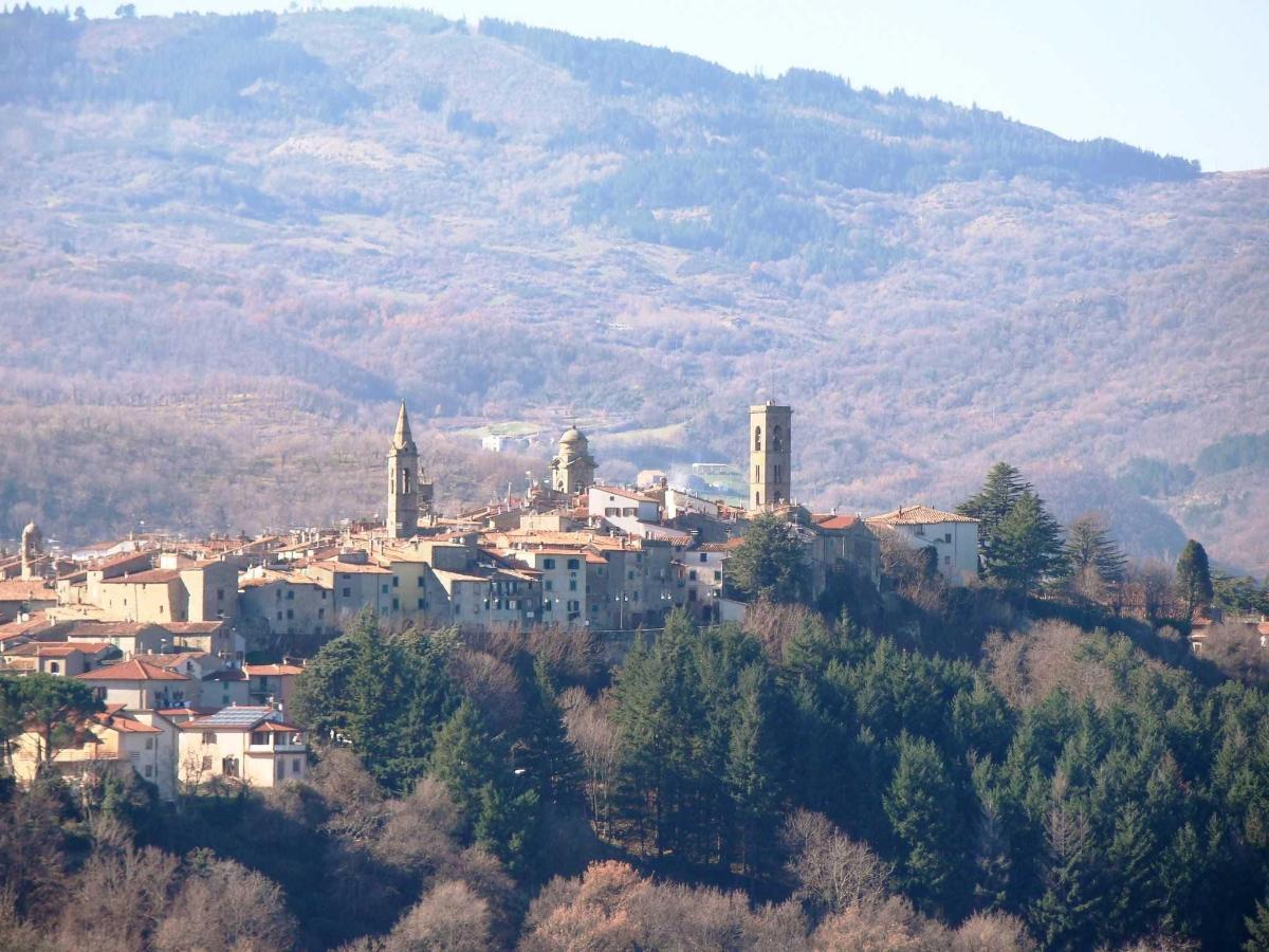 Castel del piano.jpg