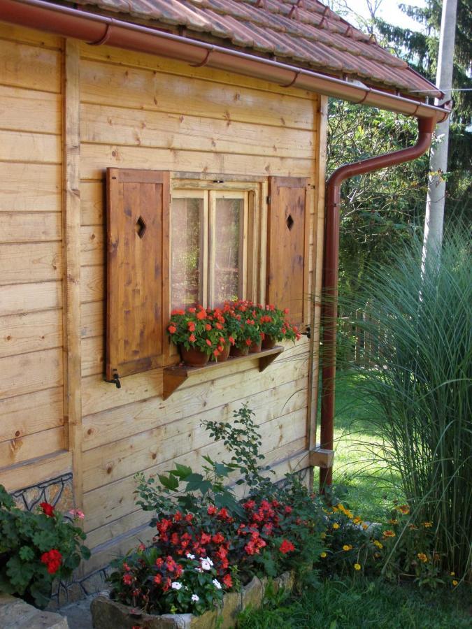 Drvena brvnara sa dve spavaće sobe za 8-9 gostiju