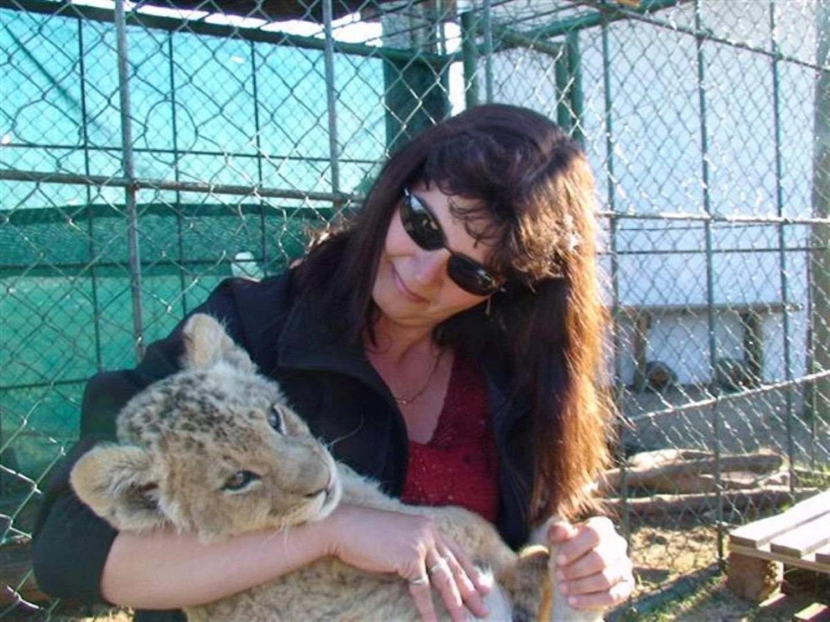 Lions park 2