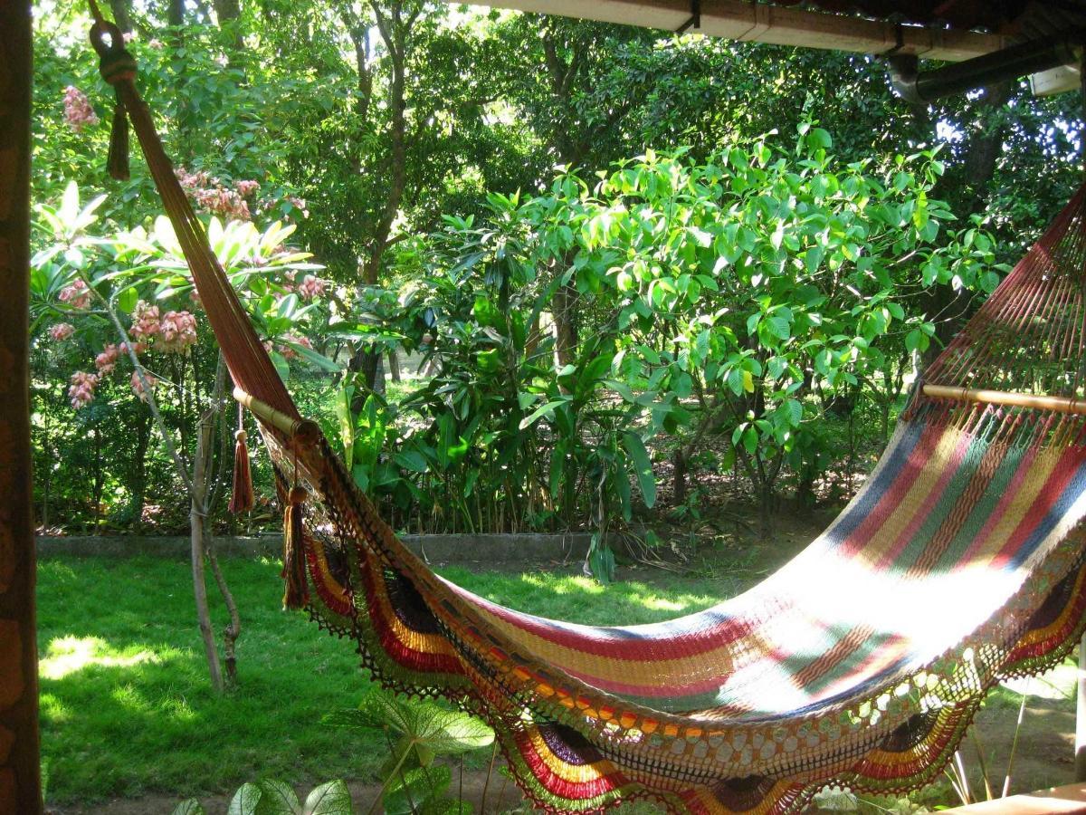 Property10  Una hamaca para descansar en el Jardín.