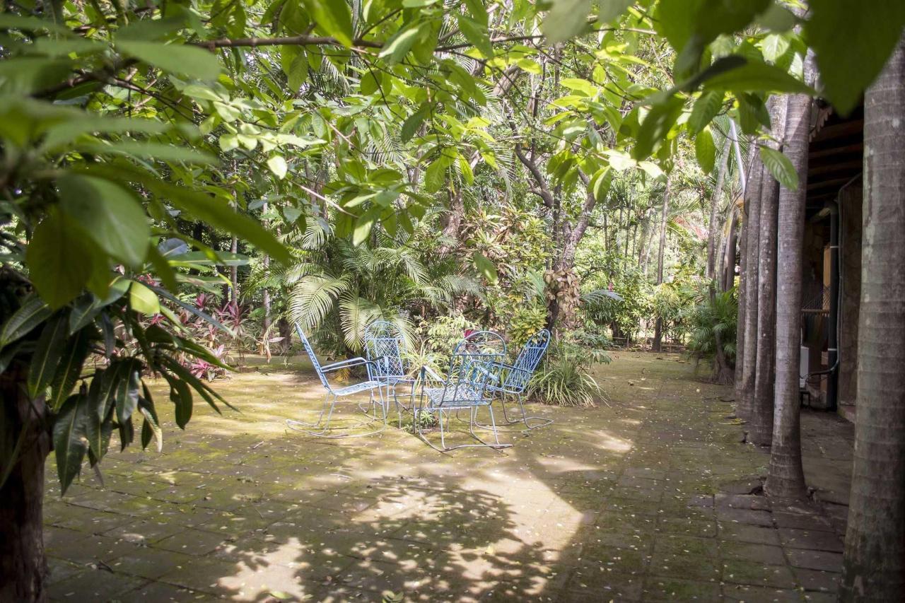 Property  Un lugar para descansar en el jardín.