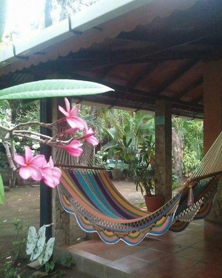 Property  Hamaca rodeada de jardín en Hotel Apastepe