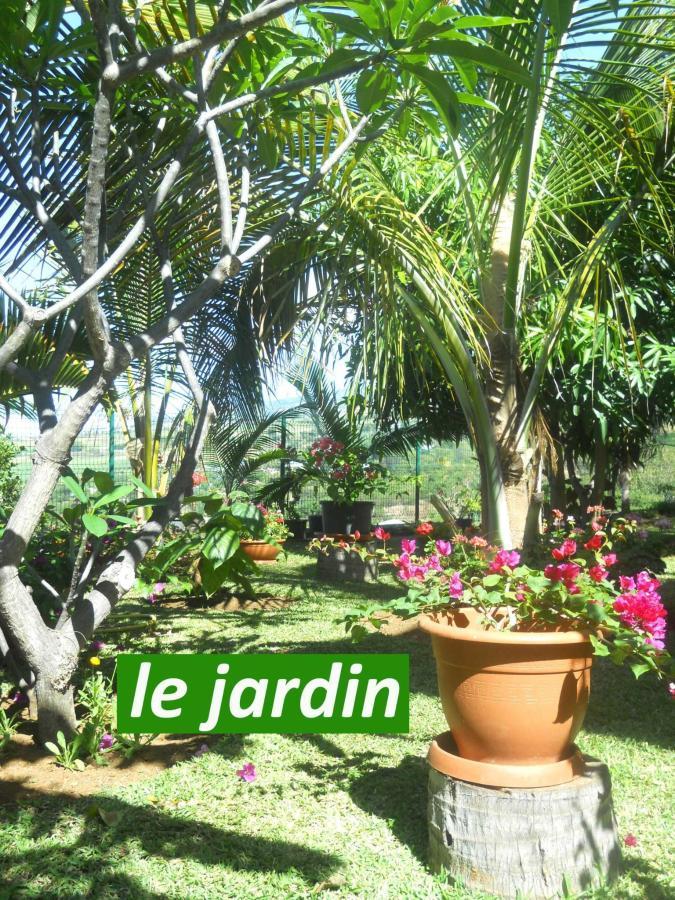 Les Hibiscus de La Rivière - Garten