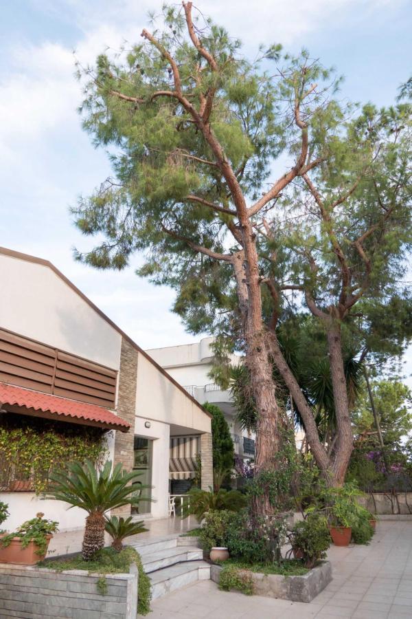 Yucca Camere & Suite