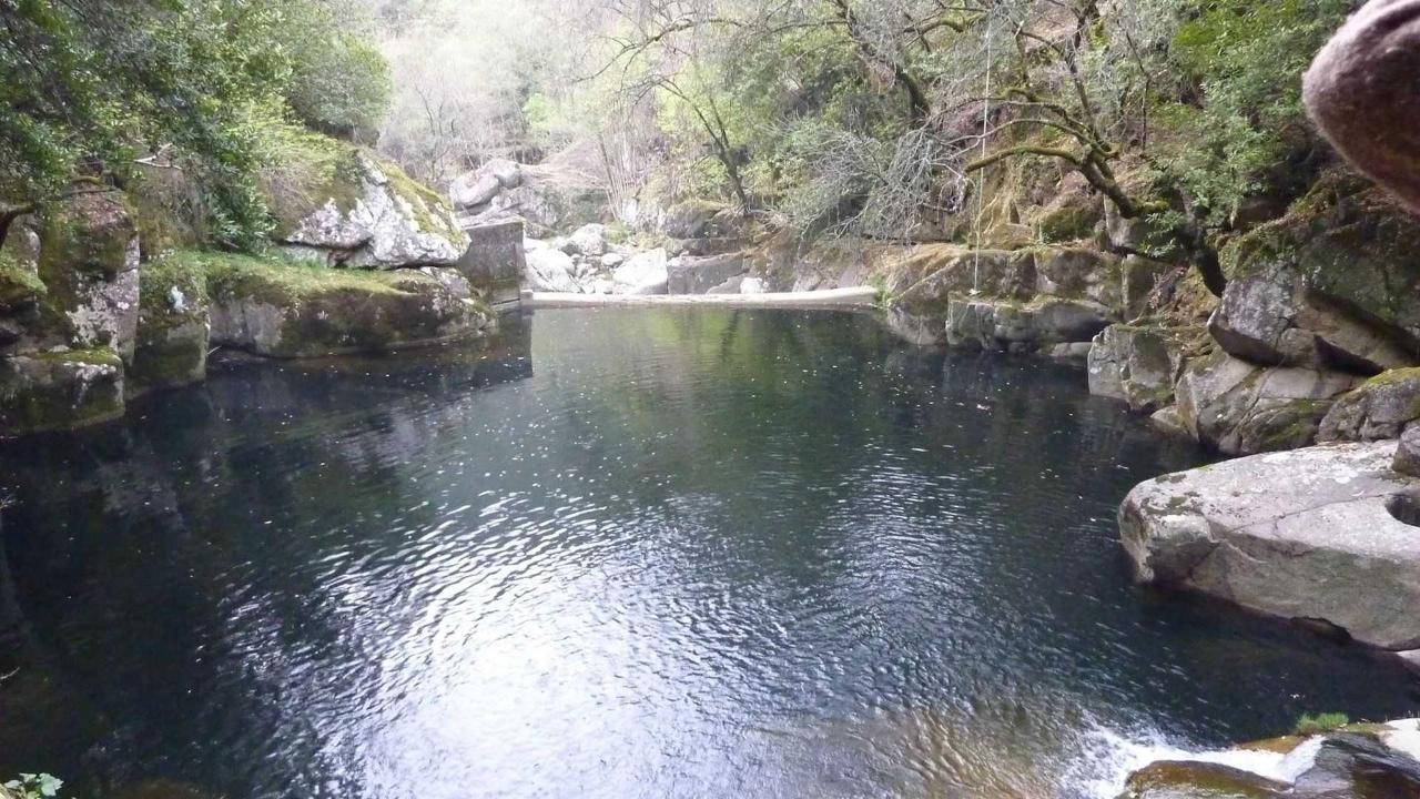 A represa no rio / The small weir on the river