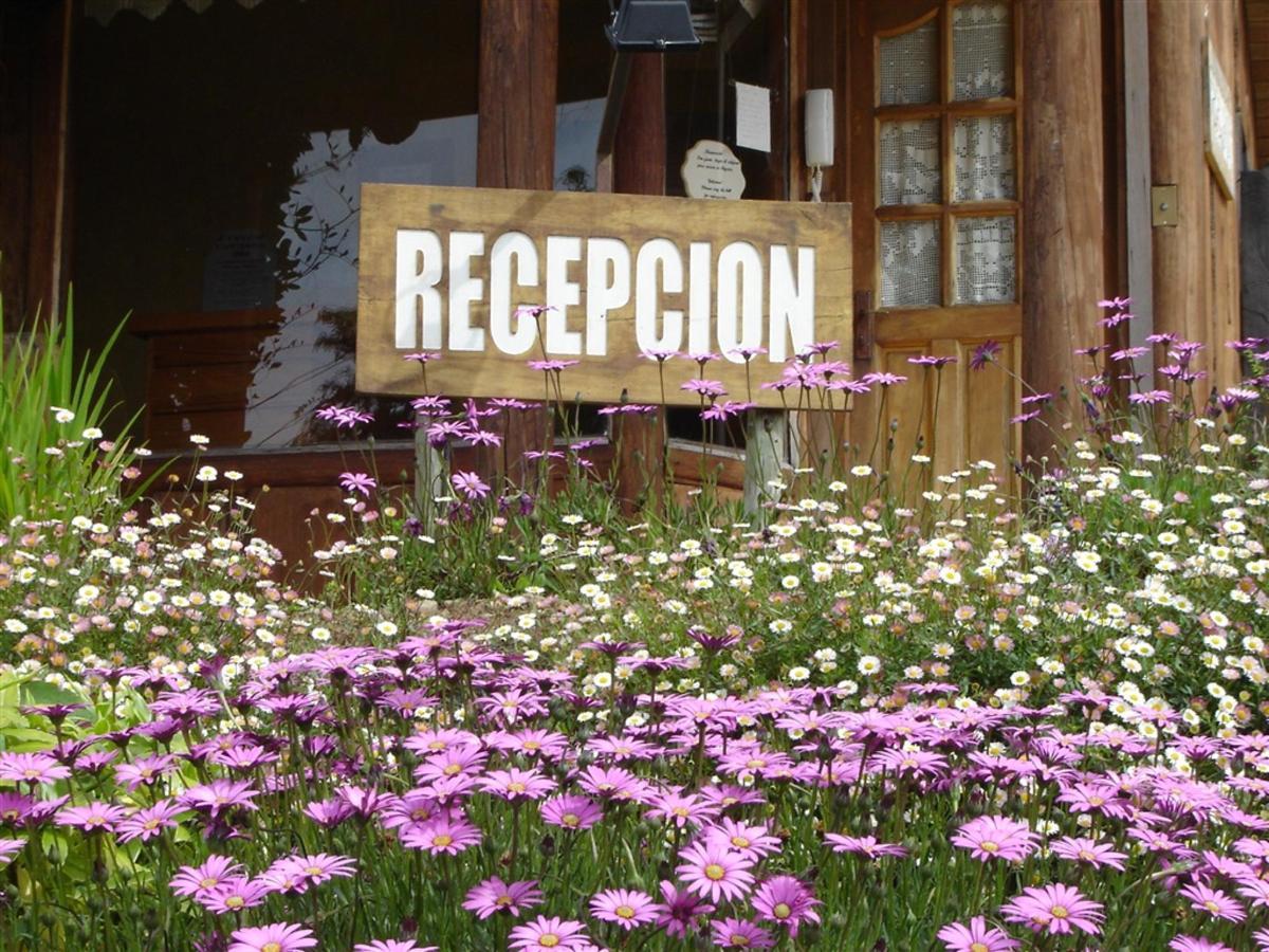 recepcion-02.jpg.1024x0.jpg