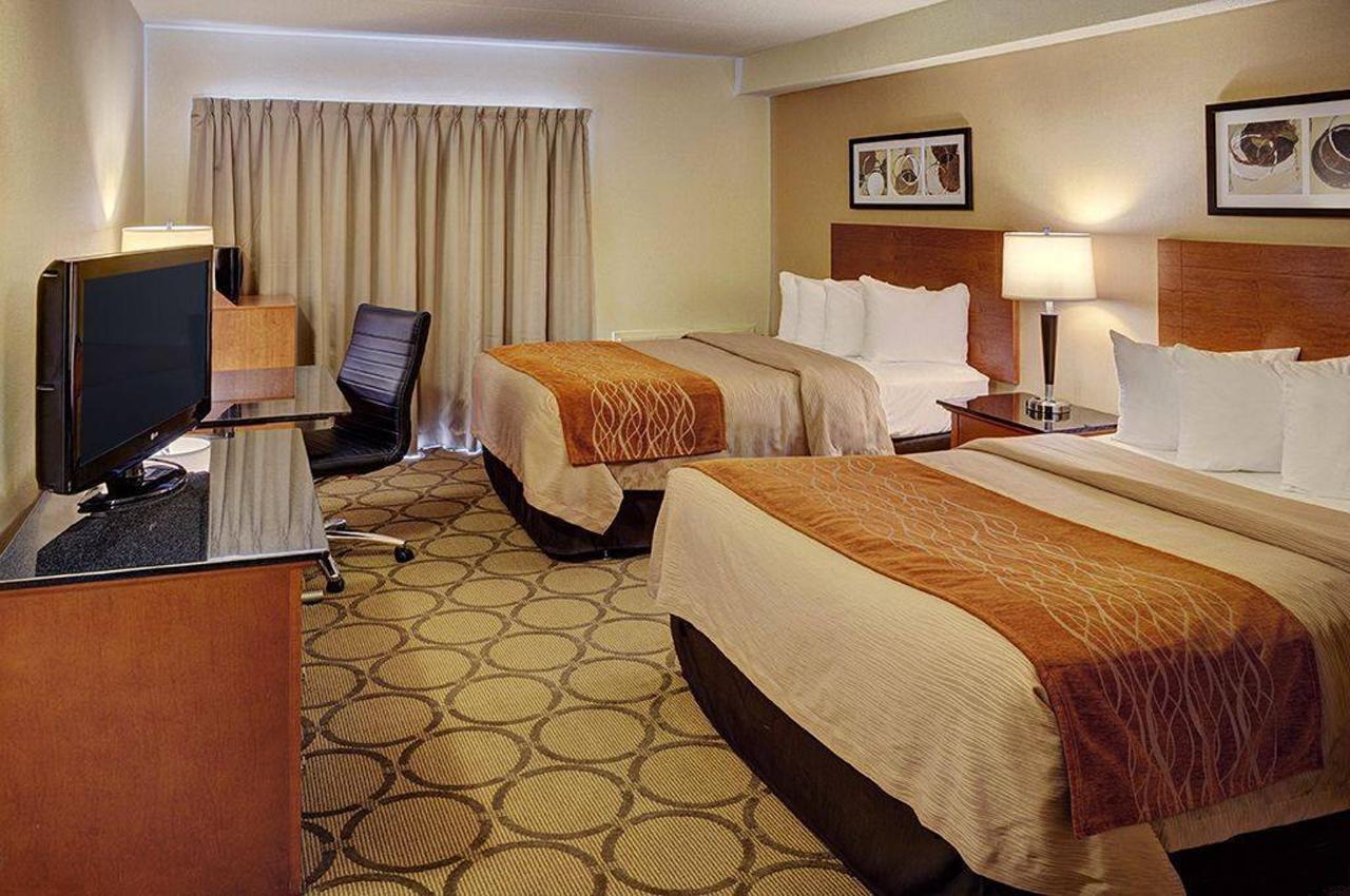 double_double_downstairs_room.jpg.1024x0.jpg