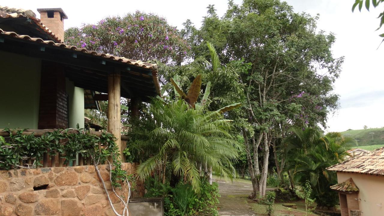 Garden (2) .JPG