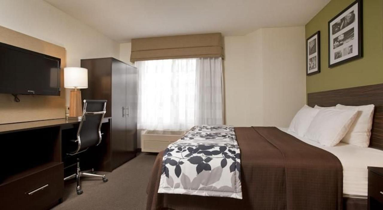 king-room (1).jpg