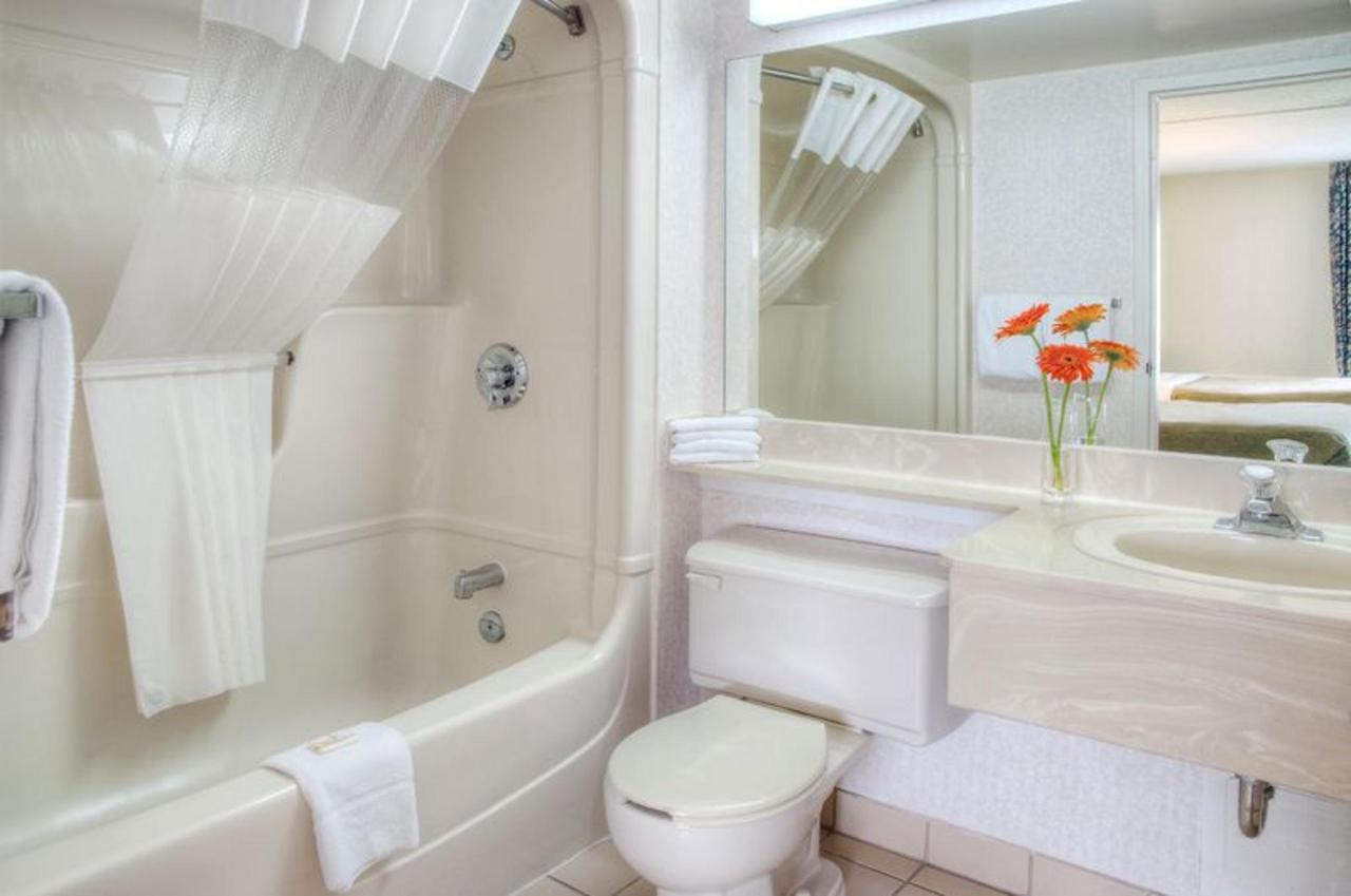 44634754_bright_and_clean_bathroom_.jpg