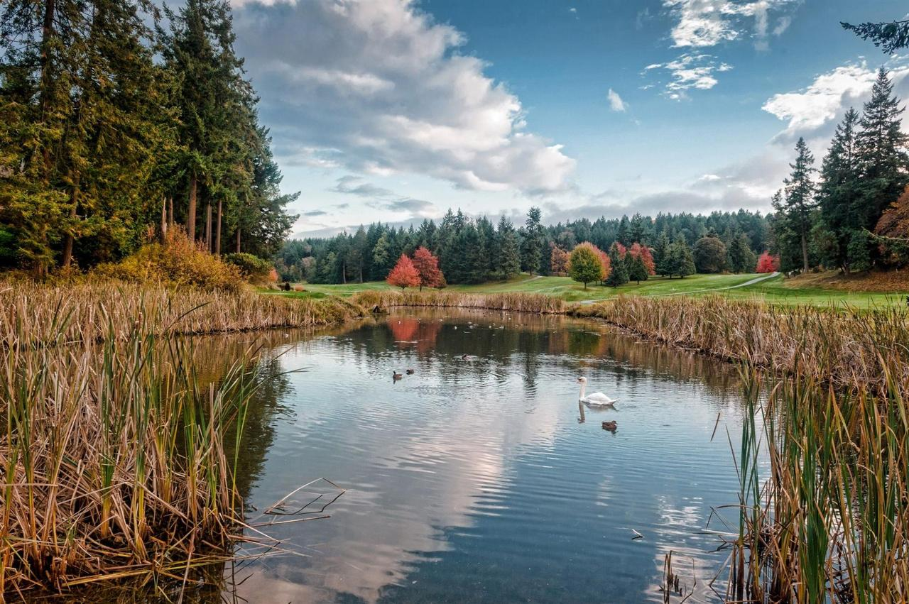 Vancouver Island Fairwinds Water Golf