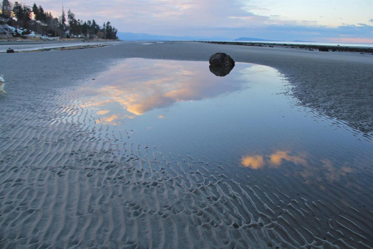 Vancouver Island Analarai Beach Reflection