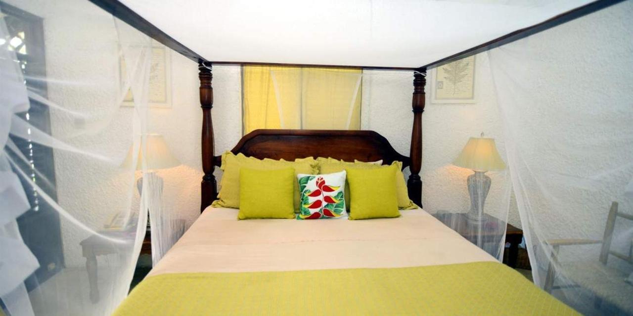 The Honeymoon Suite - Hummingbird - Saint lucia13.jpg