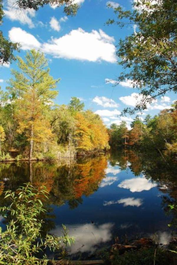 river-view.jpg.1024x0.jpg