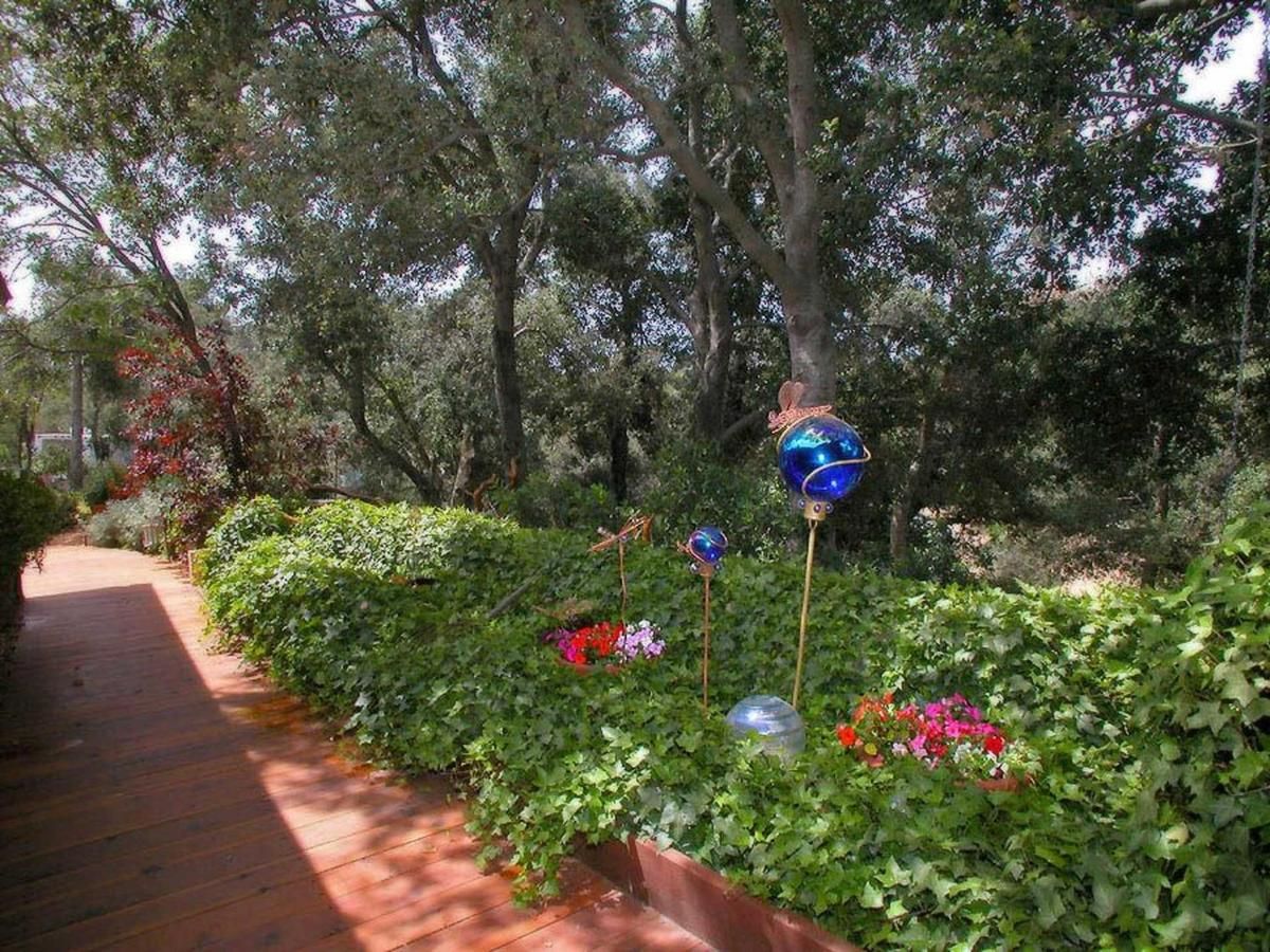 mls-garden-path-1.jpg.1920x0.jpg