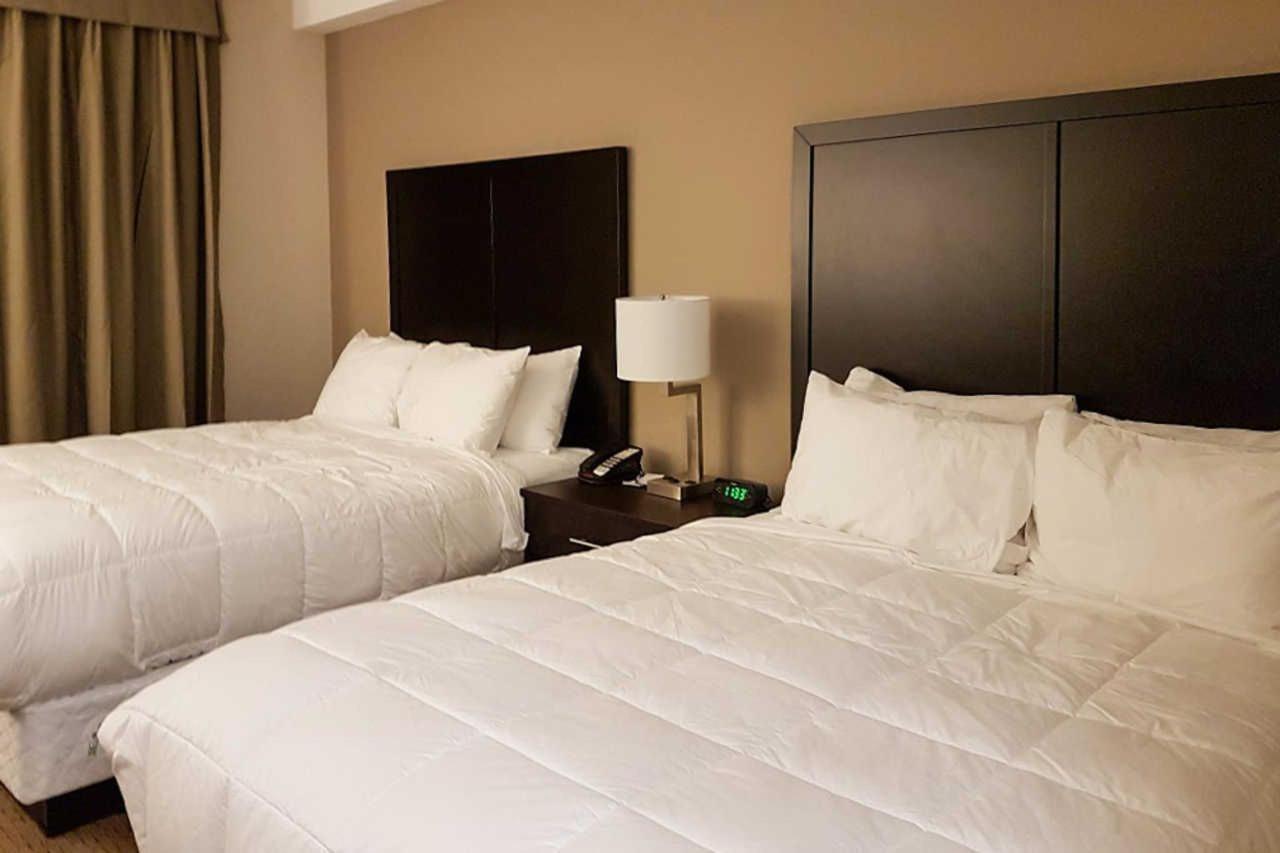 2-queen-beds-5.jpg