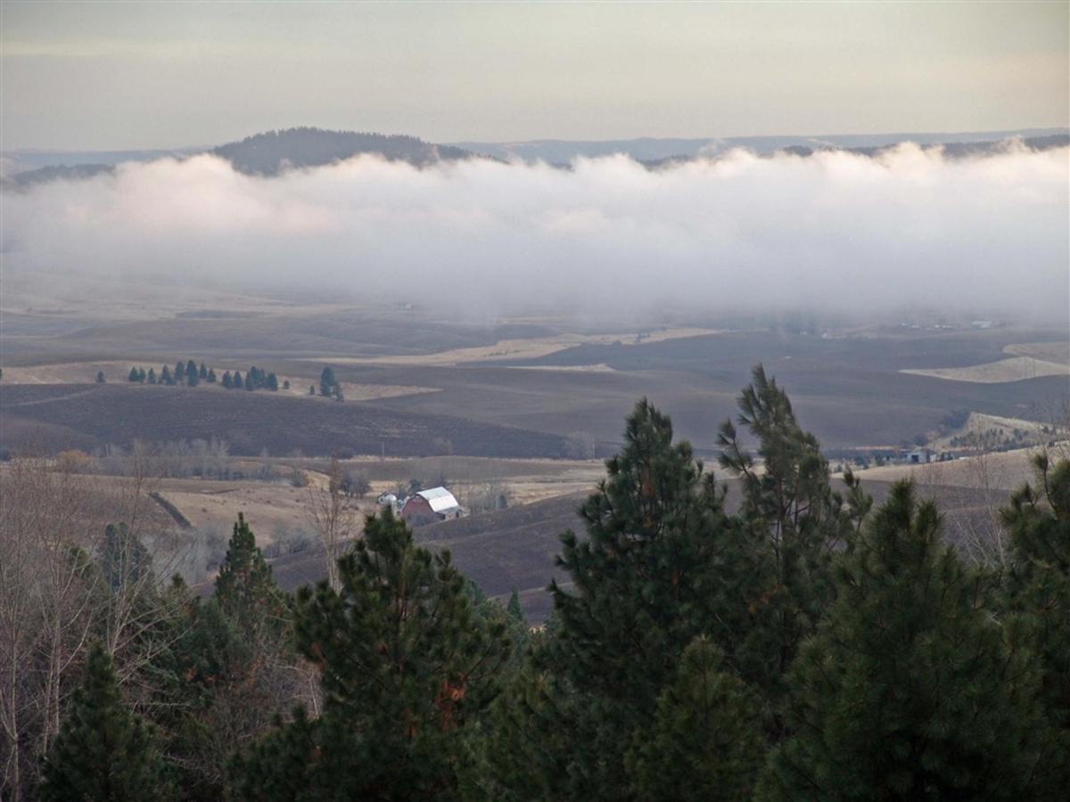 fog-rolls-in-1.jpg.1024x0.jpg