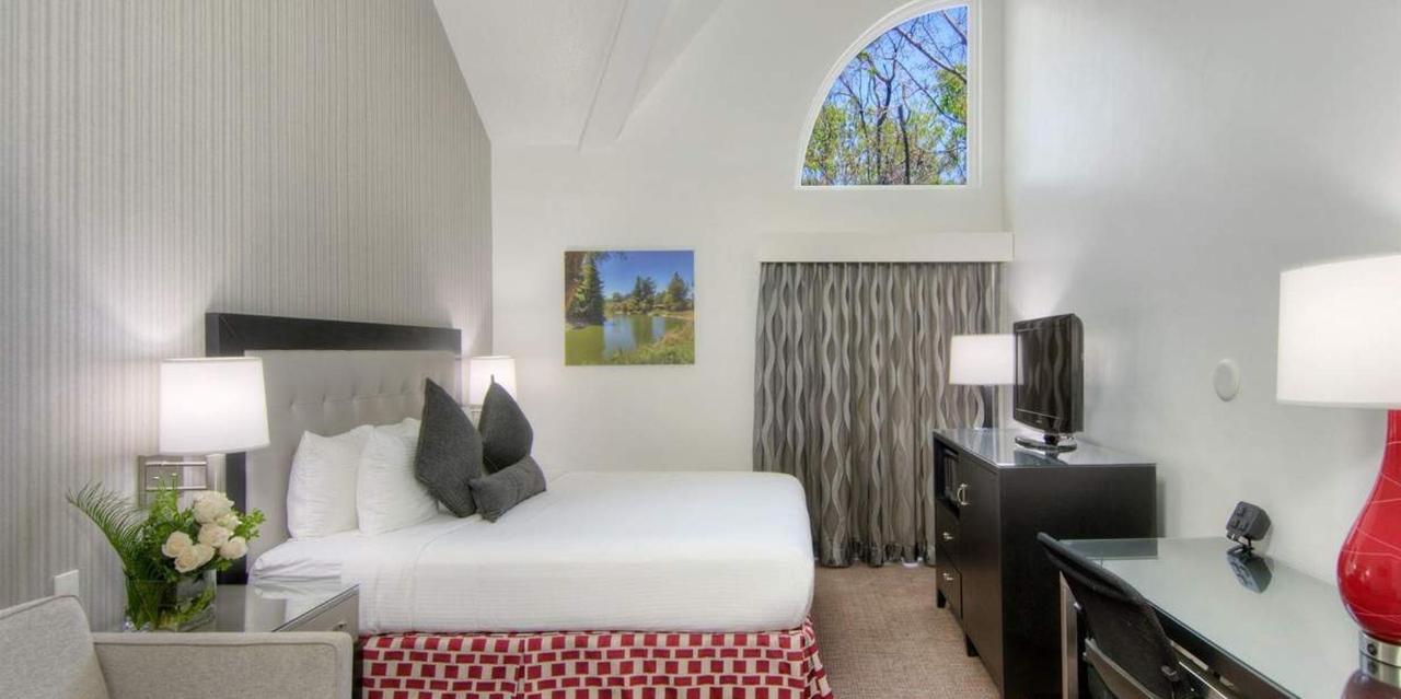 207-king-sofa-bed1.jpg.1236x617_default.jpg