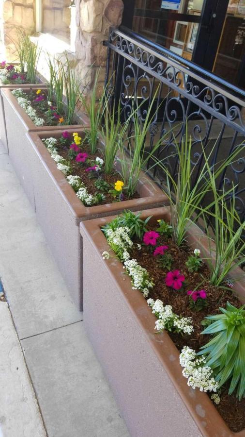 flower-planters.jpg.1920x0.jpg