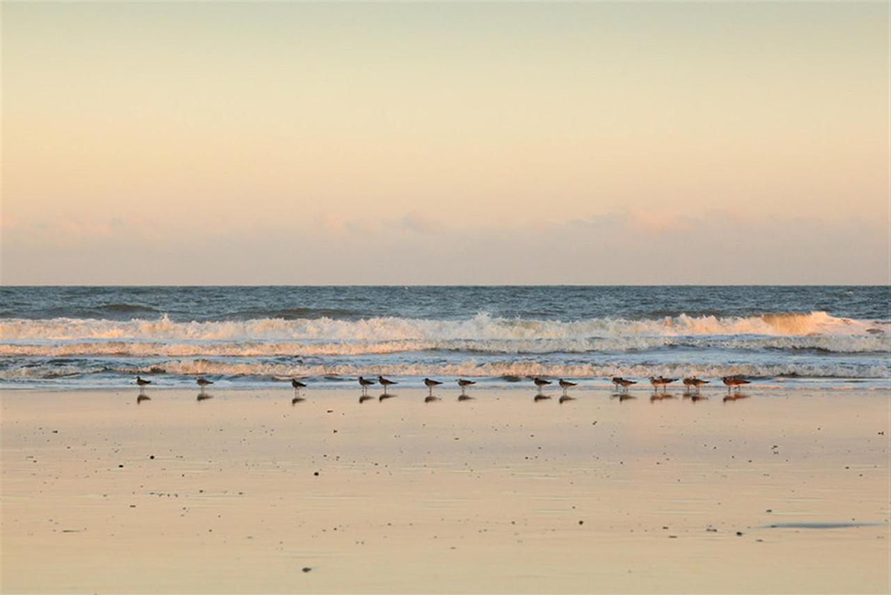 elizabeth-pointe-lodge-beach-view.jpg.1920x0.jpg