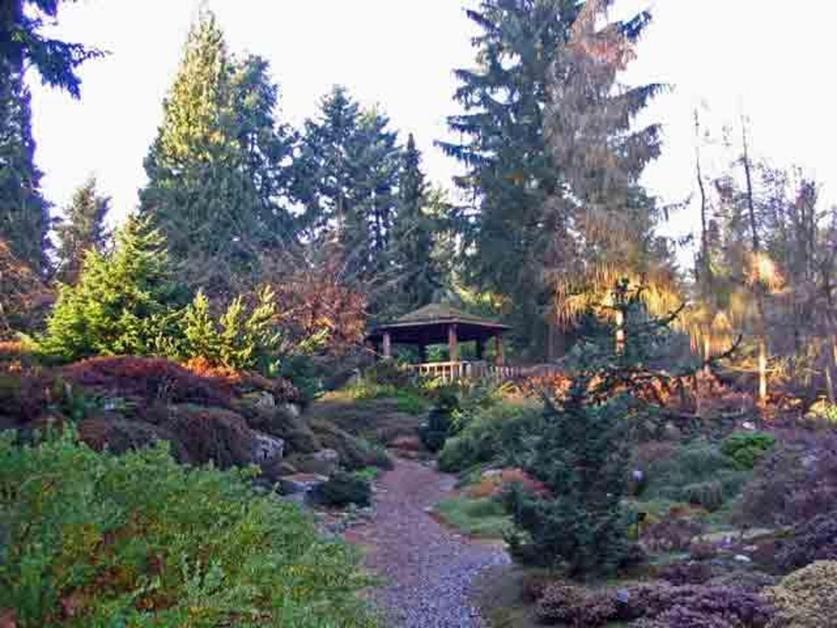 rhododendron-species-foundation-and-botanical-garden.jpg