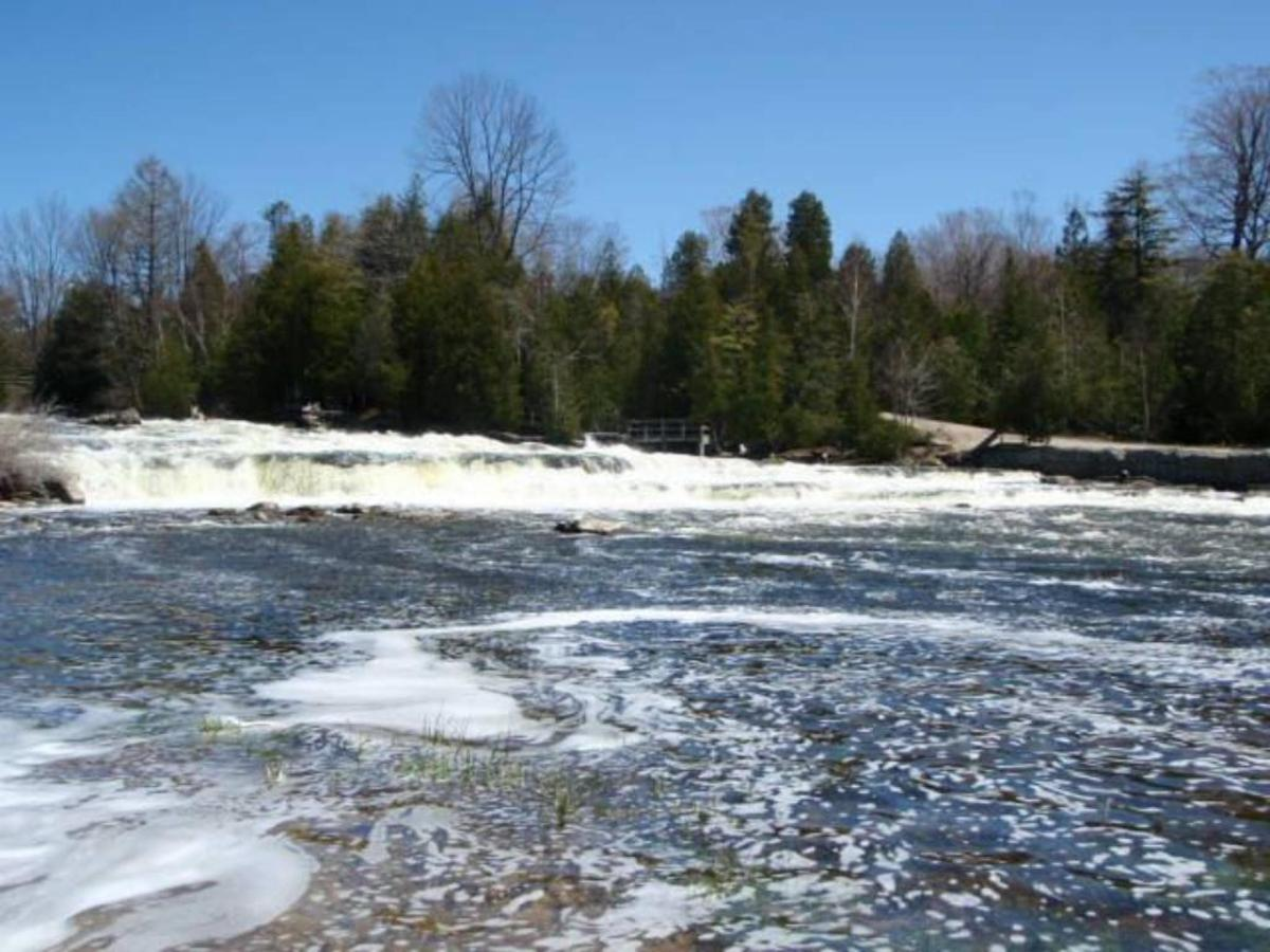 saublefalls-flowinginspring-20111.jpg.1024x0.jpg