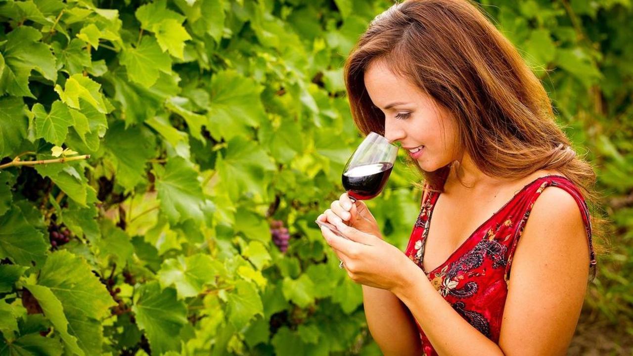 tourismemonteregie_vin-copy-copy.jpg.1024x0.jpg