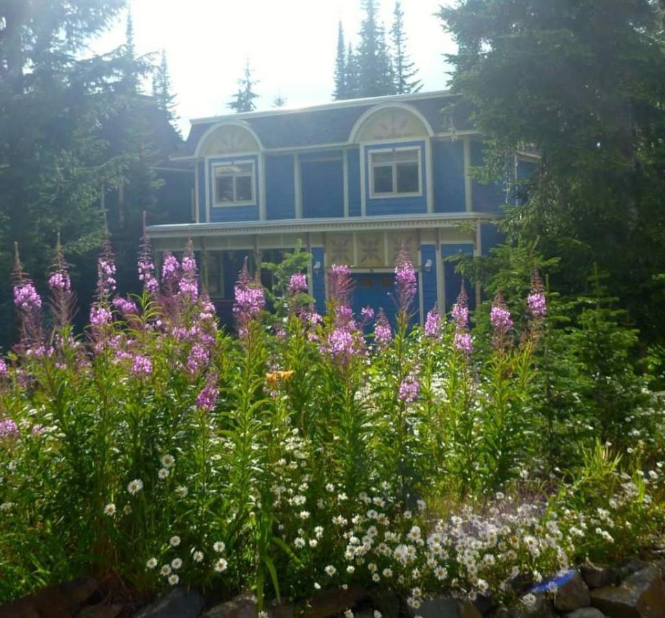wildflowers.jpg.1024x0.jpg