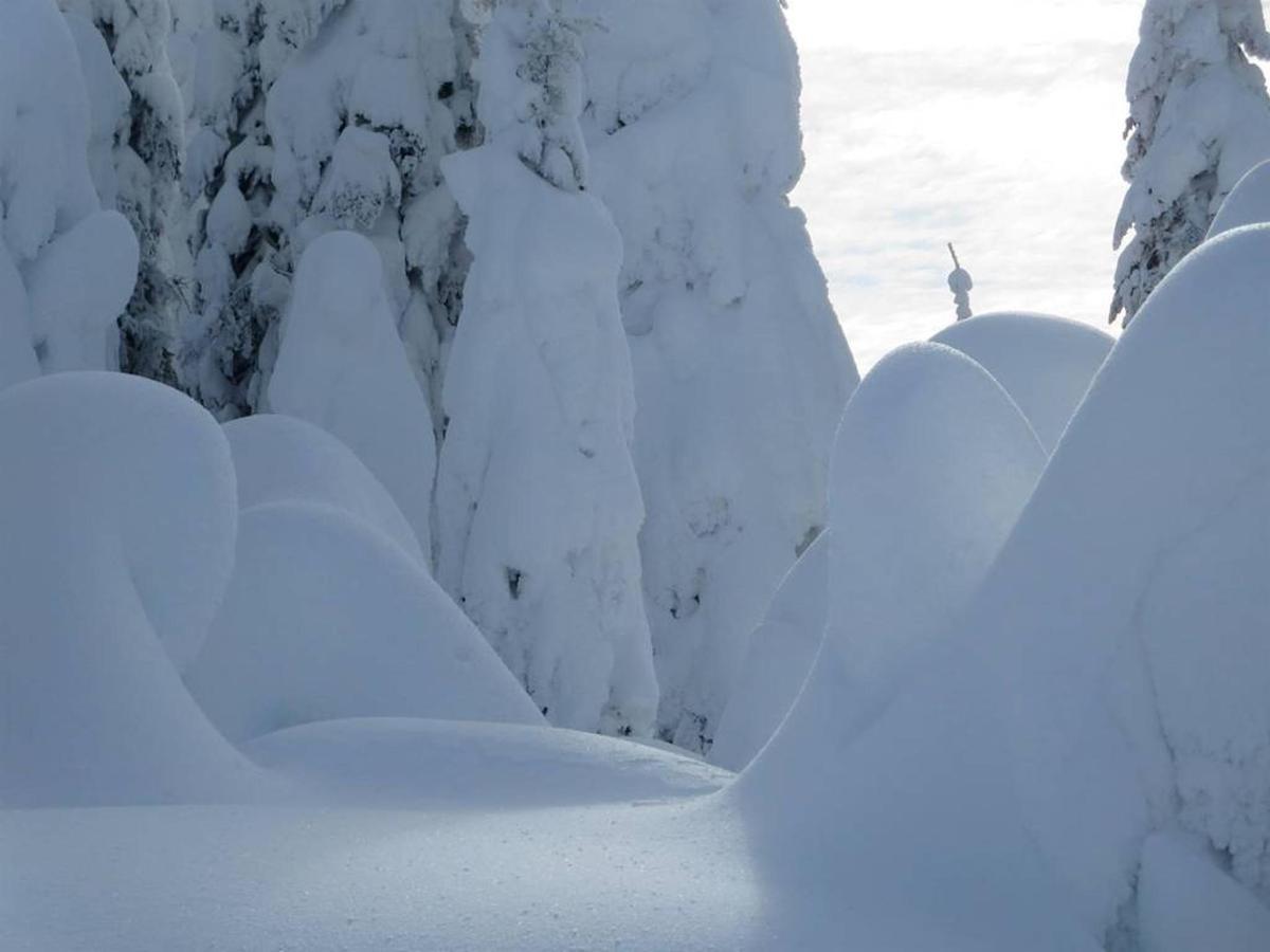 snowghosts-2-1.jpg.1024x0.jpg