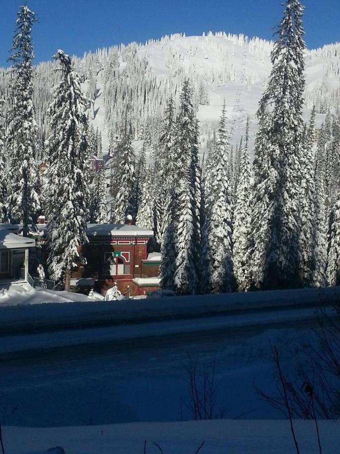 snownest.jpg.1024x0.jpg