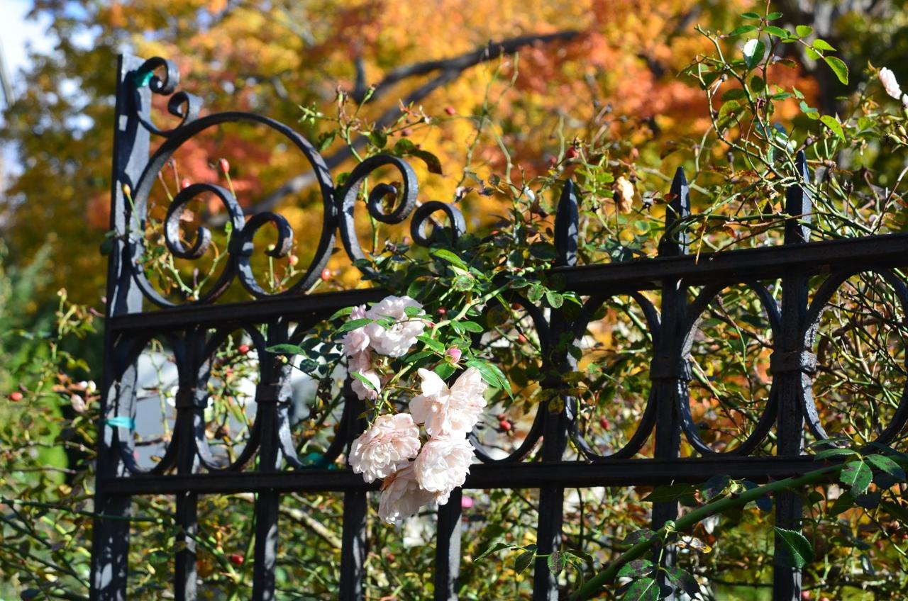 Union Gables Inn Saratoga Springs NY fall roses
