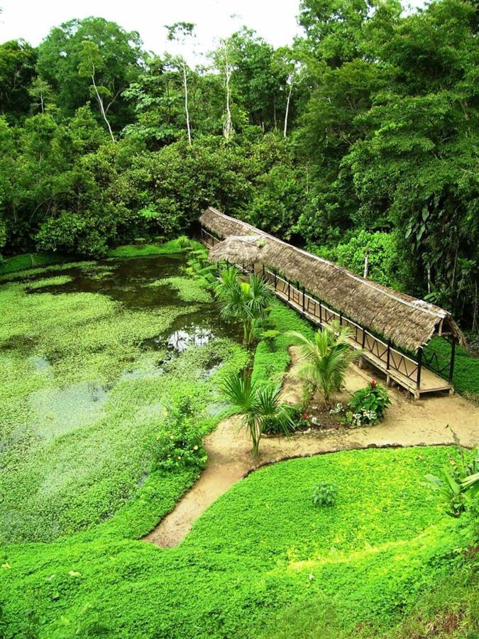 suchipakari-rainforest-hotel-jungle-lodge-ecuador-social-areas-01-2.jpg.1024x0.jpg