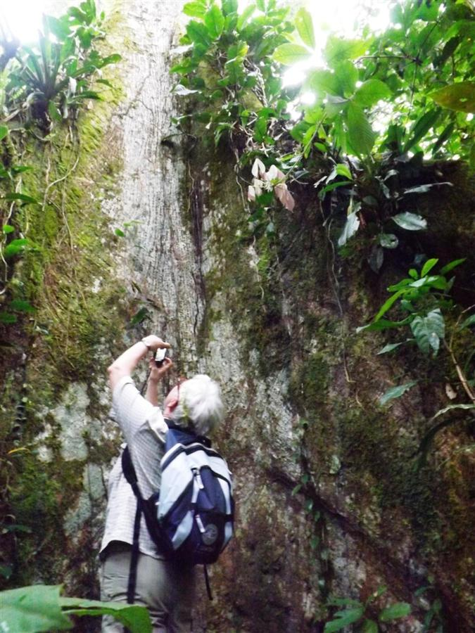 bird-observation-a-medicinal-plants-a-giant-ceibo-tree-a-river-tubbing-a-privat-33.JPG.1024x0.JPG