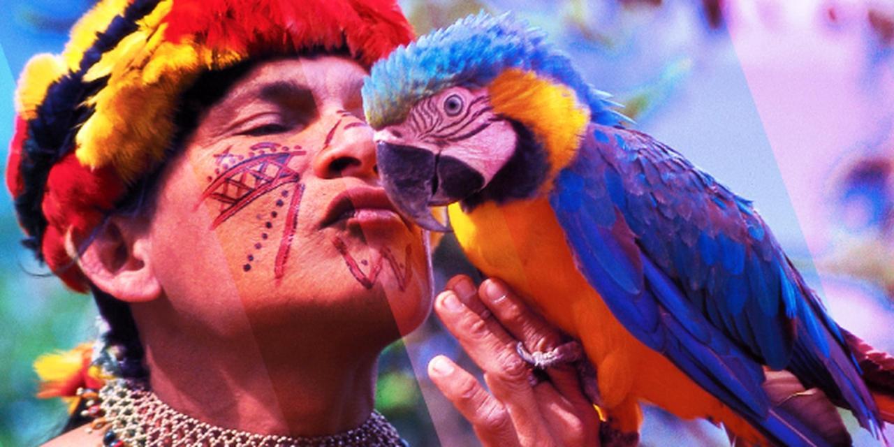 birdwatching-suchipakari-ecuador.png